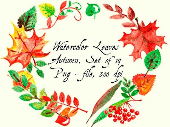 Watercolor Leaves. Autumn. Clip Art Digital. от VectorGraphicArts