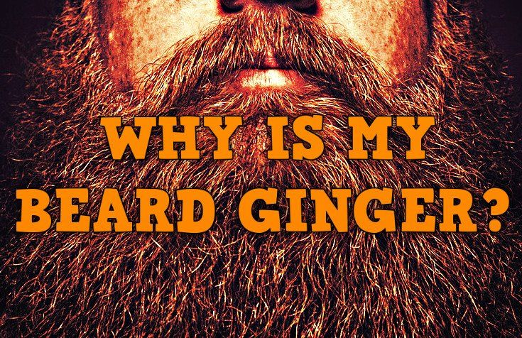 MY HAIR IS NOT GINGER, SO WHY IS MY BEARD?