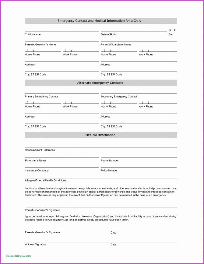 Free Patient Information Form Template Luxury Fresh Chart Format