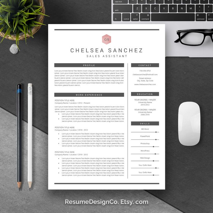 Functional Resume Template Microsoft%0A Etsy com  you can get high quality and professional resume templates