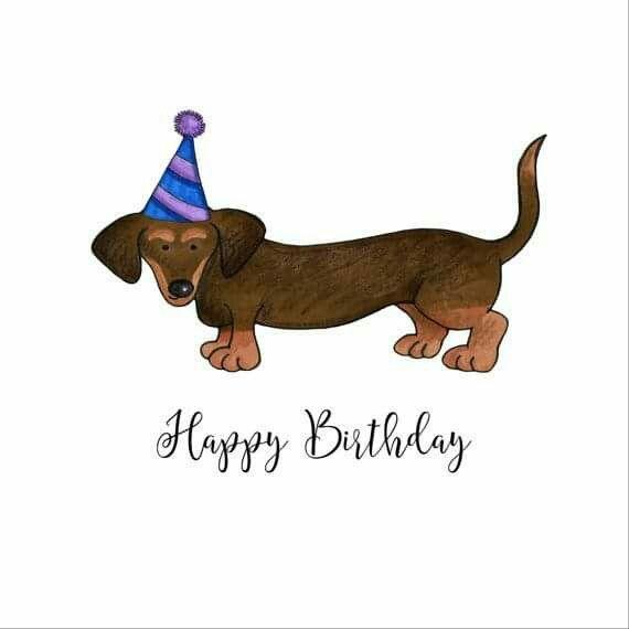 С днем рождения открытка с таксой, что это праздник