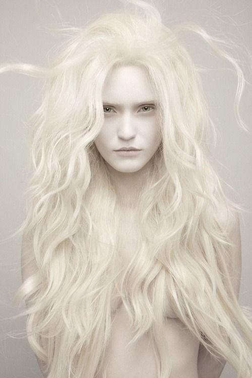 Graimz--Albino model                                                                                                                                                                                 More