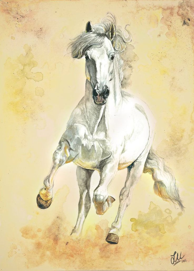 """""""White Storm""""  White horse in watercolors and acrylics in A4 size 20x30cm size paper by Lullaby Equine Art"""