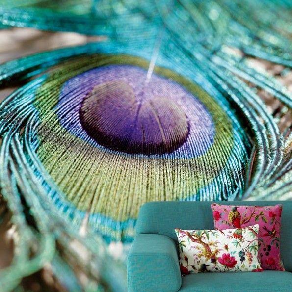 Feather bij Behangwebshop