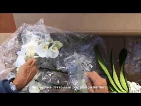 Emballage VPC de nos orchidées - Orchidées Vacherot & Lecoufle