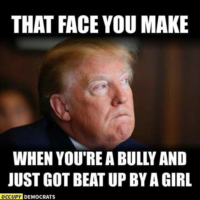 TRUMP the face you make when you're a BULLY and just got your ass kicked by a Girl! :P