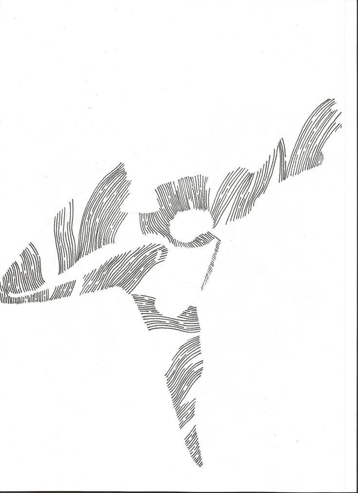 bird drawing by Joanna Franks