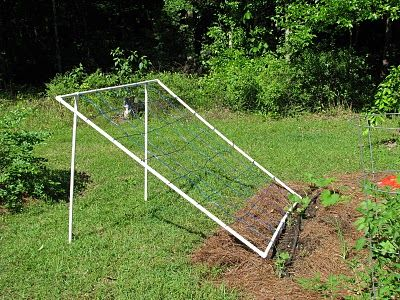 garden trellis built out of low cost PVC piping and clothesline for the mesh.  GENIUS!  I'd like a 4'X4' trellis for cucumbers