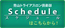 Aoyama triathlon club schedule