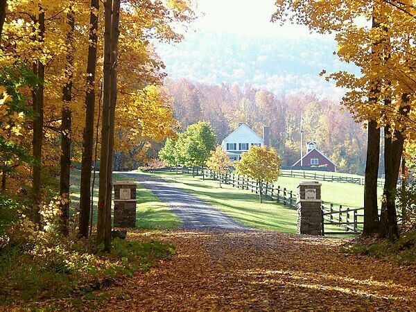 26 Best Tree Lined Driveways Images On Pinterest