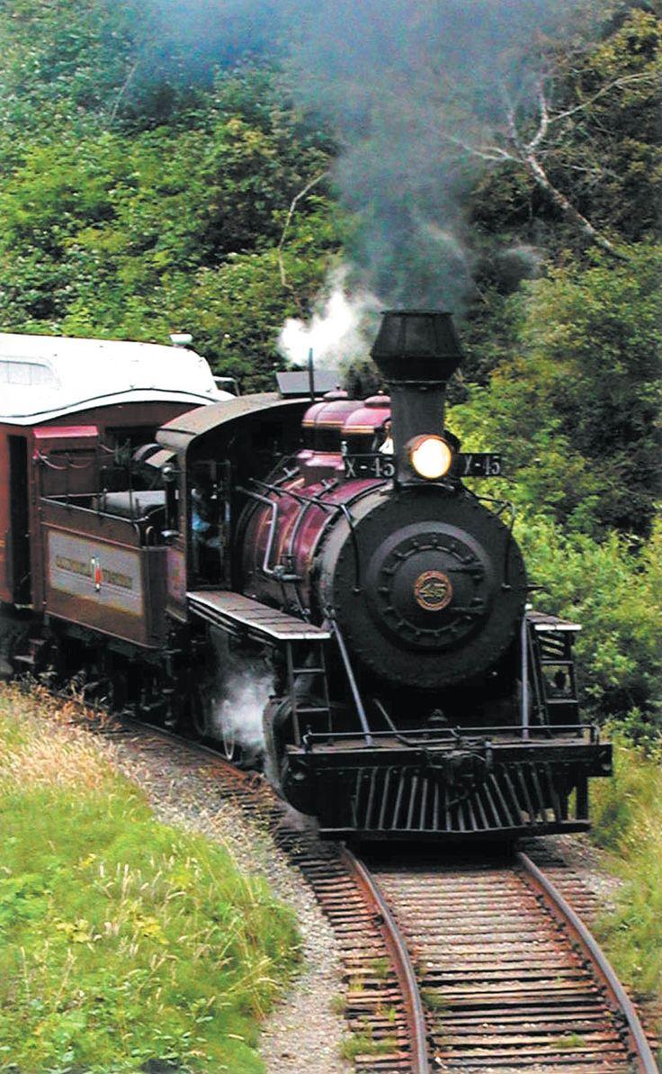 20 best skunk train images on pinterest skunks fort bragg and