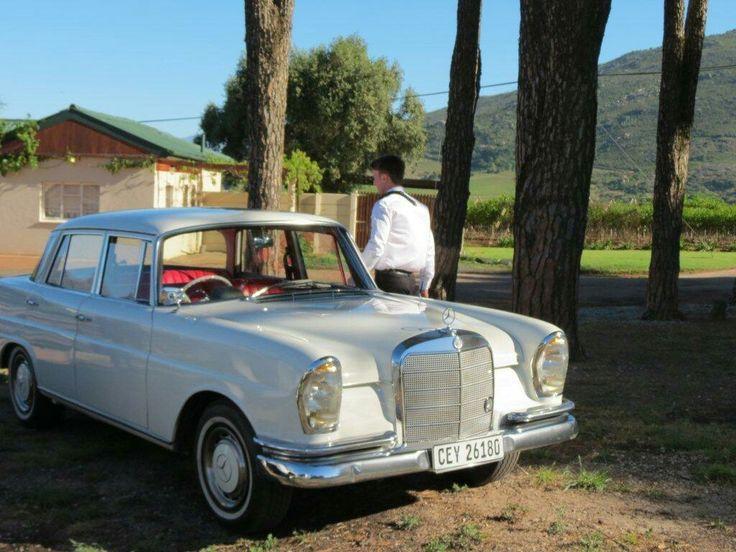 Mercedes 1964 fintail 220
