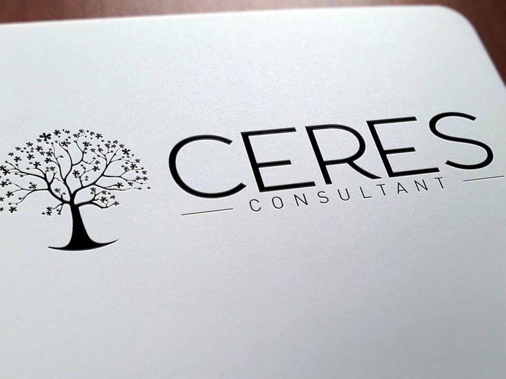 création logo graphiste professionnelle pour consultant