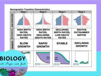 This EDITABLE card sort covers the stages of demographic transition, characteristics of populations, graphs, age pyramids, example populations and more. This can be done individually, with a partner, or in small groups. Teachers can laminate both the cards and student sheets for
