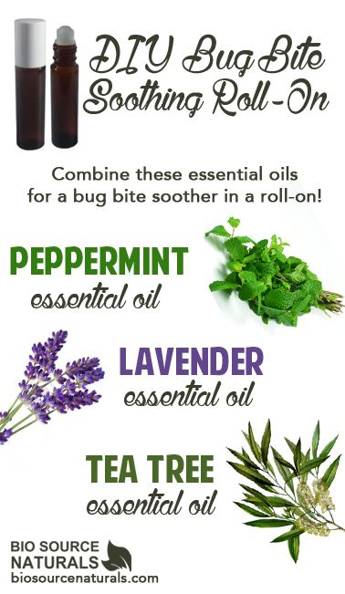 Combine these fantastic essential oils in a roll-on bottle for a DIY bug bite soother! #aromatherapy