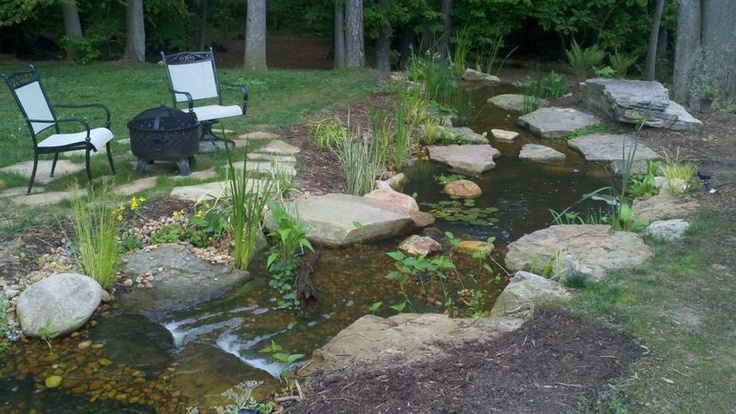 8 best streams images on pinterest gardening garden for Farm pond maintenance