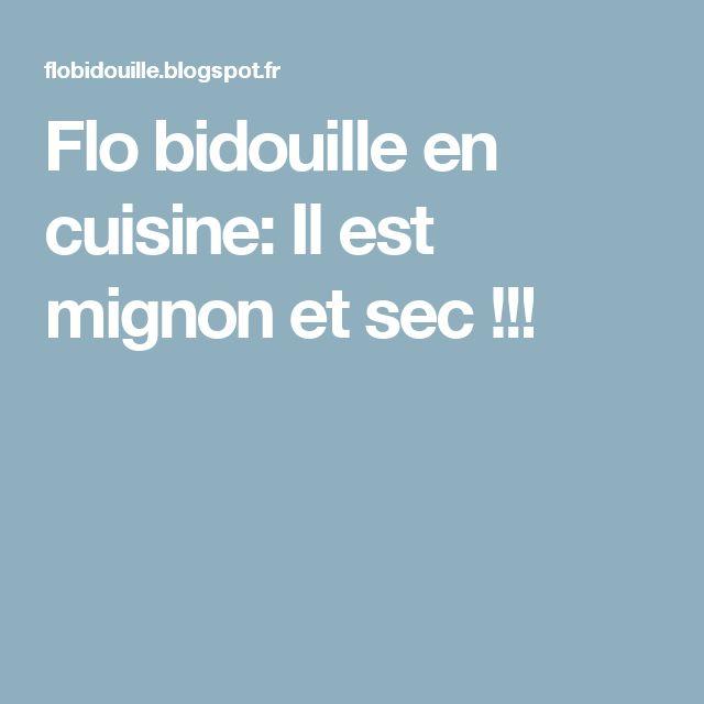 Flo bidouille en cuisine: Il est mignon et sec !!!