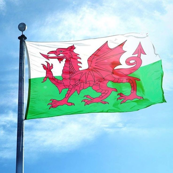 Wishing you all a very happy St David's Day!  Did you know that the tradition of wearing leeks on St David's Day goes back to the eve of the battle against the Saxons? St David advised the Britons to wear leeks in their caps to easily distinguish friend from foe and helped to secure a victory. We love St David's ingenuity! #stdavidsday #theglowstudio