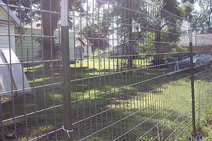 How To Build A Great Escape Proof Dog Fence Cuteness Com