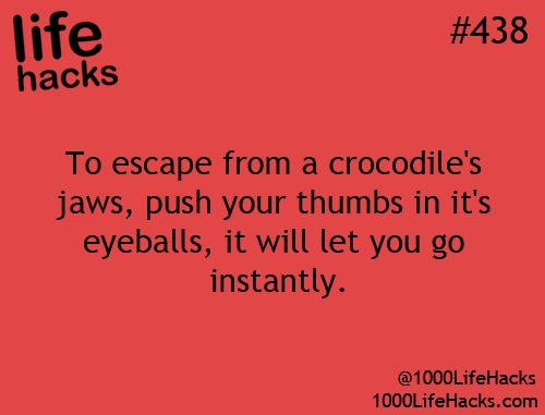 1000 Life Hacks | I'm fairly certain I'm never gonna be anywhere near a crocodile. But, hey, y'can never be too careful.