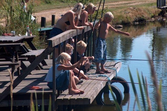 NÆR PÅ NATUREN: På papiret er skolernes sommerferie gået i gang. Men vejret har endnu ikke vist sig fra sine varme og solrige side. Heldigvis lover meteorologerne dog, at sommeren nu kommer Danmark og det sydlige Sverige. #Sverige #ferie #rejser