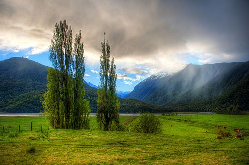 Beautiful spring near Nelson New Zealand