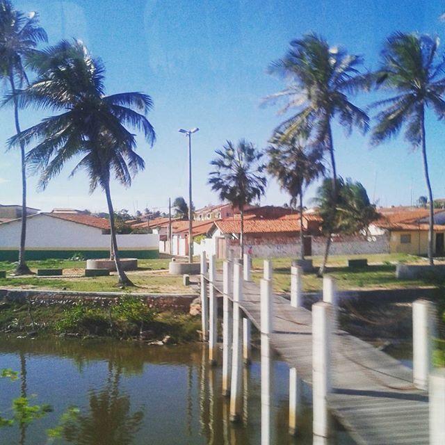 Se eu tivesse deixado de olhar pela janela por um minuto, teria perdido essa vista. #desafioprimeira (madeira) . . . . . . . . . . . . . #caponga #ceara #viagem #travel #trip #instatravel #instatrip #achadosdasemana #destinosnacionais #fotoxigenio #vscofotografia_ #jardimfotografico #pilpuadg #vsco #vscofeed #vsconature #vscogallery #ponte #pontedemadeira #caixafotografica #vitrinevisual #oceanofotografico #umardetalentos #parededevidro #paraisofotografiico #lunaticpics #blogsdaliga…