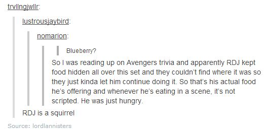 Robert Downey Jr. is a squirrel.