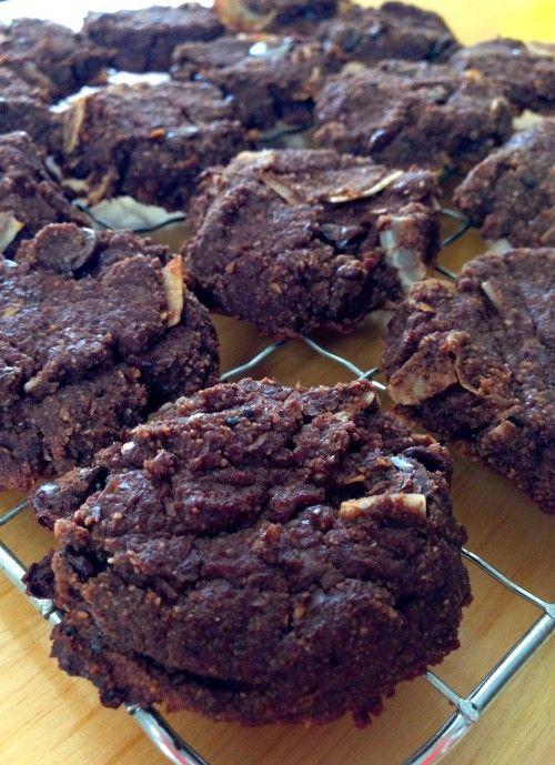 Tasty Tuesdays ~ Chocolate Almond Pulp Cookies | ElenaHight.com