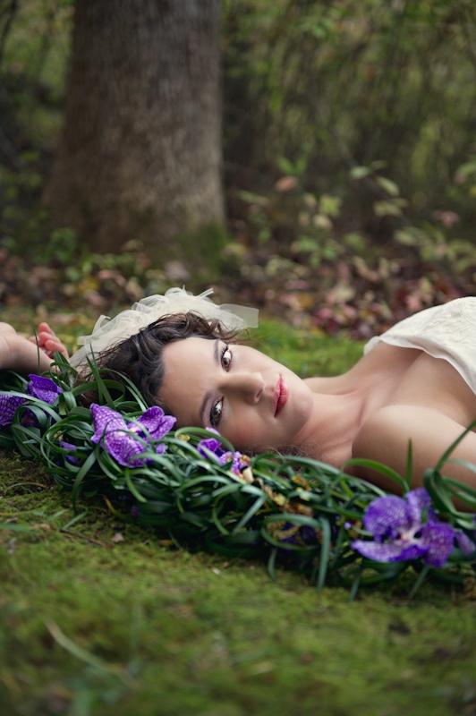 Beautiful nature free stock photos download 25340 Free