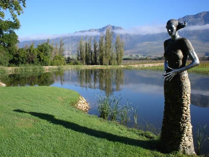 This regal statue by the pond can be found at Saronsberg Vineyard Cottages, Tulbagh.