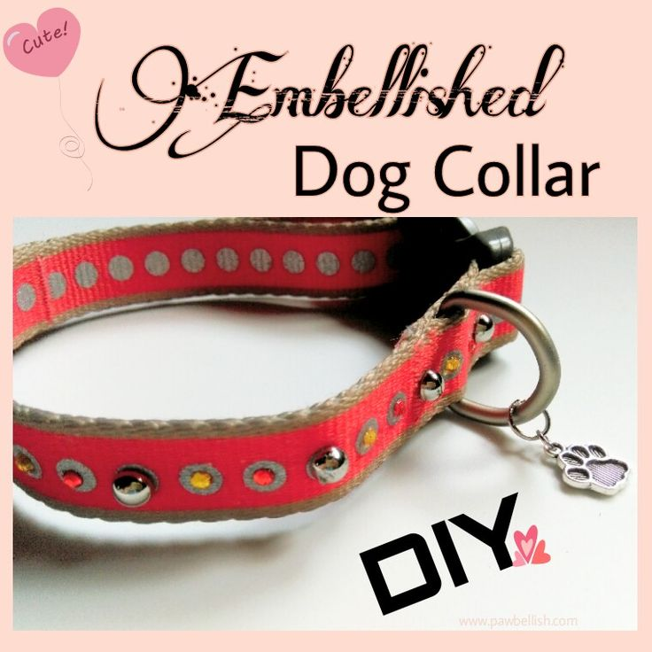 161 best diy dog crafts images on pinterest dog accessories dog 161 best diy dog crafts images on pinterest dog accessories dog cat and pets solutioingenieria Image collections