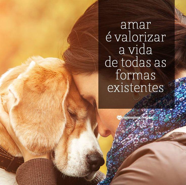 """http://www.ippb.org.br/textos/especiais/editora-vivencia/os-animais-no-plano-espiritual = """"AMOR é tudo aquilo que seu cachorro sente quando você chega em casa"""""""