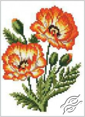 NEW - Poppies - Gvello Stitch