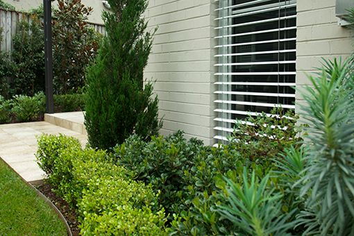 Joanne Green | Castlecrag project, North Shore Sydney, Landscape Design, Landscape Construction, Cotswold Furniture, Adirondack Chairs, Bird Bath, Copper Water Feature, Native Style Garden, Formal Garden, Lilly Pilly, Japanese Box Hedge, Little Gem Magnolias, Crepe Myrtle, Coastal Rosemary, Silverbush, Mediterranean Spurge, Indian Hawthorn, Spartan Juniper, Mat Rush and Grevillea varieties.