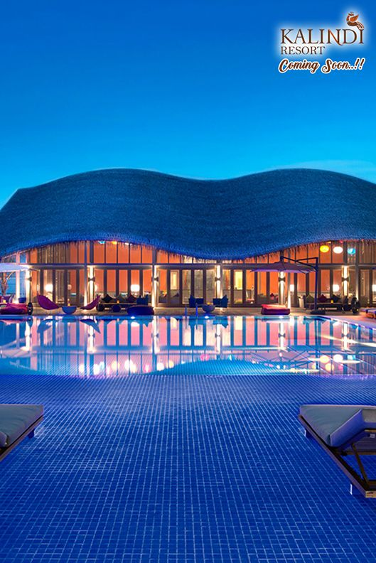 Wonderful Beautiful Swimming Pools Surrounded By Nature.