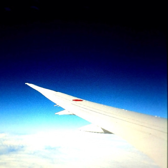 I'm beautiful curved wings.