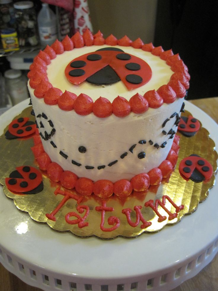 How To Make A Ladybug Smash Cake