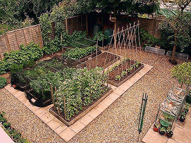 簡単diy レイズドベッドで家庭菜園に挑戦 In 2020 Plants Garden