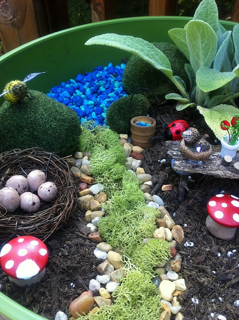 A fairy garden! For my daughter who loves fairies I want to be there with you