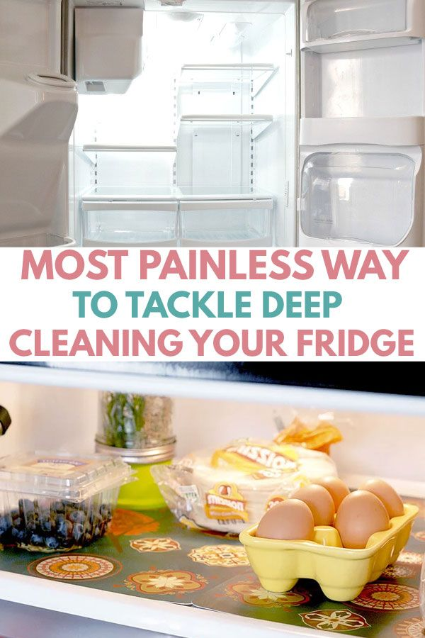 6 Simple Steps to a Spotlessly Clean Refrigerator | Best