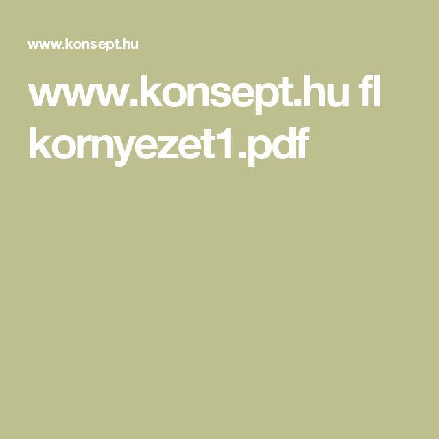 www.konsept.hu fl kornyezet1.pdf