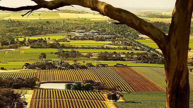 The Barossa Valley , South Australia