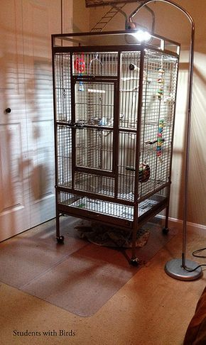 Prevue Pet cage with office mat to catch mess http://studentswithbirds.wordpress.com/2014/03/03/life-hacks-for-parrot-owners/?relatedposts_exclude=7632