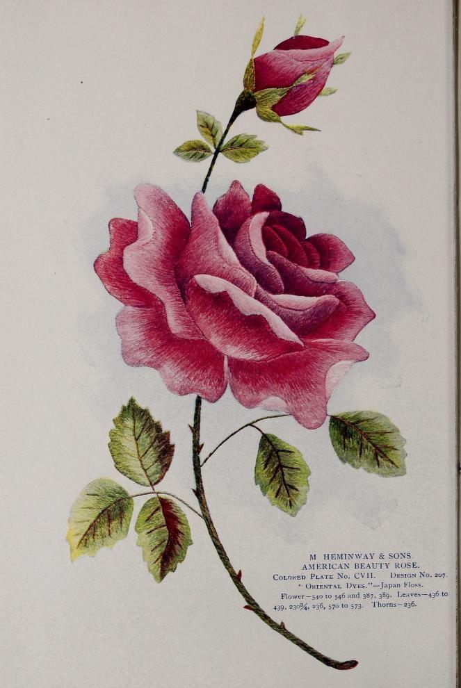 Çiçek tarama