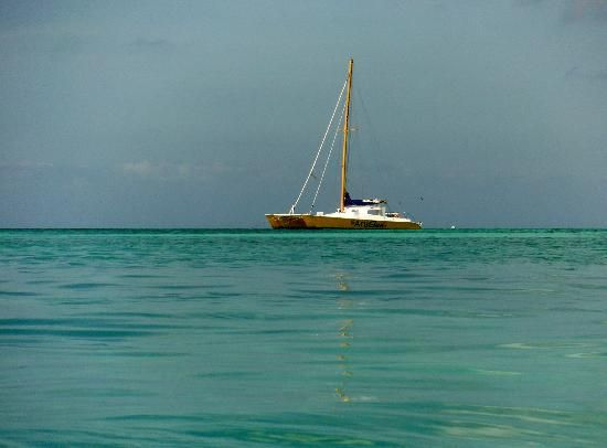 Occidental Grand Aruba: Tranquility
