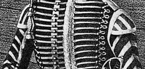 крыльца на доломане и ментиках трубачей российских гусарских полков, 1817 год