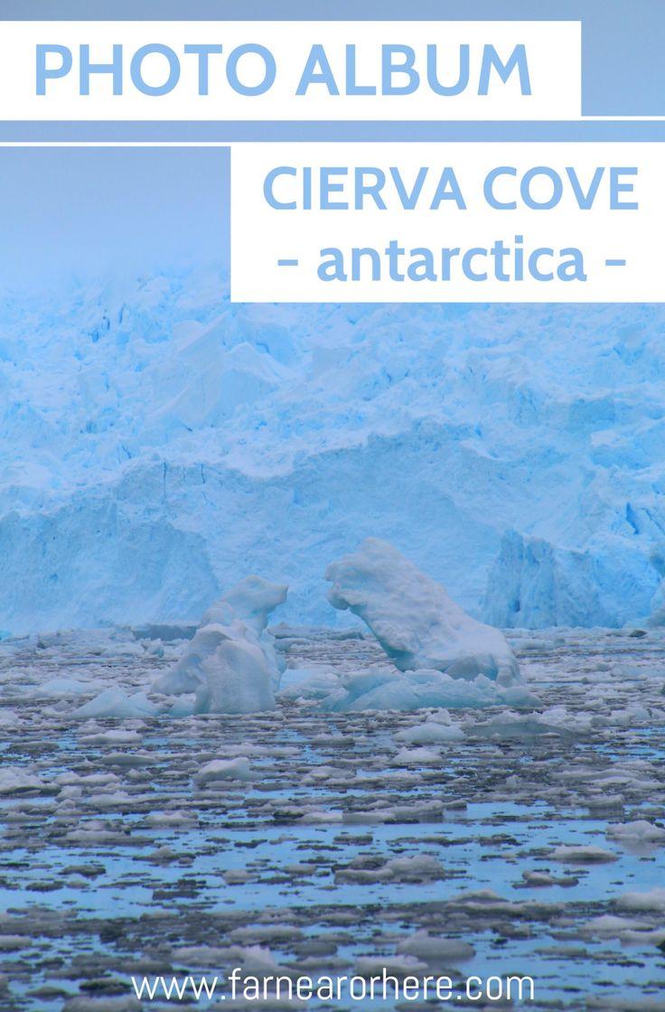 Take a photo tour of Antarctica's Cierva Cove ...