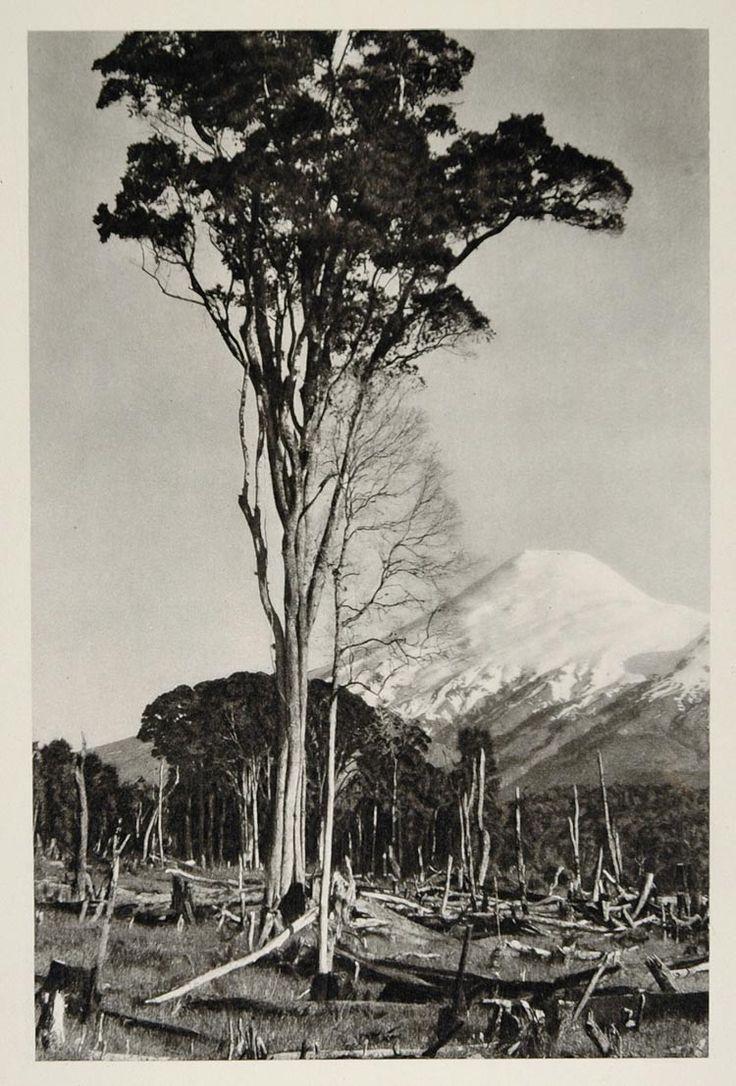 1931 Volcan Osorno Active Volcano Chile Photogravure - ORIGINAL PHOTOGRAVURE SA2
