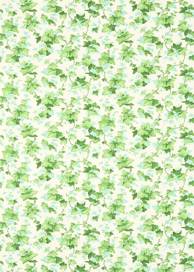 Hedara (224336) - Sanderson Fabrics - A clambering trail of ivy leaves, Hedera is based on a true Sanderson evergreen wallpaper. Hedera naturally graces bedrooms, garden rooms and living rooms. Shown here in shades of green and white. Other colour ways and coordinating wallpaper available. Please request a sample for true colour and texture match.
